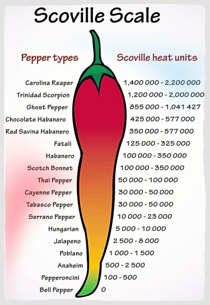 hot pepper scale